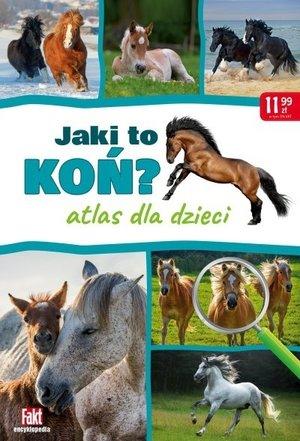 Jaki to koń?
